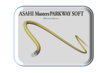 Masters Parkway Soft – 1,9 Fr Selective microcatheter