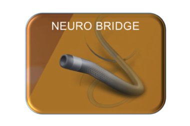 Acandis Neuro Bridge